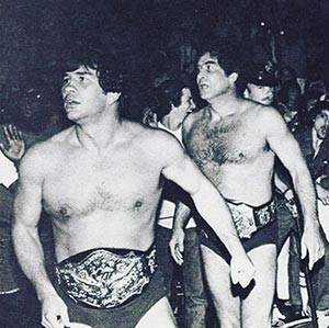 jack and jerry brisco